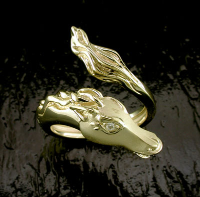 Equestrian Horse Ring by Steven Douglas